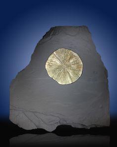 """Pyrite """"Sun"""" on Slate"""