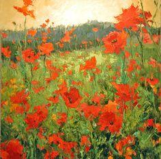 Diane Ainsworth - Poppies