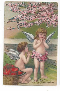 Antique 1912 Valentines Day Post Card Winged Cherubs Apple Blossoms Hearts    ##