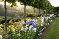 cotswold garden.