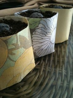 Old newspapers make great organic planting pots for herbs and other small seedlings. Made by lovebybean.