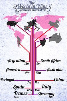 The World In Wine Production Beso de Vino