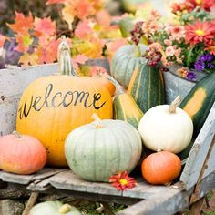 Welcome your guests with this quick and easy display! Click through for more looks here: http://www.bhg.com/decorating/seasonal/fall/pretty-pumpkins-for-fall/?socsrc=bhgpin090214pumpkinwelcome&page=2