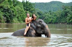 Elephant Village in Bangkok. #Travel #Asia #Thailand #Bangkok