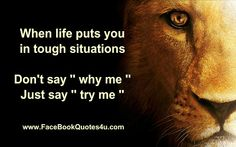 Great saying, 'When life puts you in tough situations. Don't say, why me? Just say, try me'.