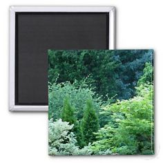Nature and Trees Magnet #nature #photography #trees #magnet #art #gifts #zazzle #petspower