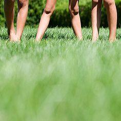 6 tricks to make your backyard a blast. backyard mad