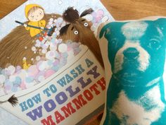 One of my faves How To Wash A Woolly Mammoth by Kate  Hindley and Michelle Robinson