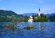 """""""Lago di Bled"""" del turistapercaso Tav83 (Slovenia) #buongiorno #amazing"""