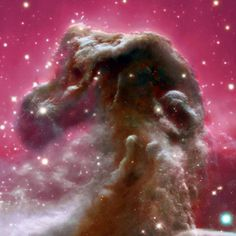 The Horsehead Nebula from Blue to Infrared / One of the most identifiable nebulae in the sky, the Horsehead Nebula in Orion, is part of a large, dark, molecular cloud. Also known as Barnard 33, the unusual shape was first discovered on a photographic plate in the late 1800s. The red glow originates from hydrogen gas predominantly behind the nebula, ionized by the nearby bright star Sigma Orionis.