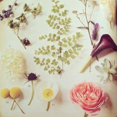 Curious about how to DIY your wedding flowers? Read this post via @Nordstrom Weddings