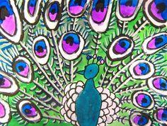 warm and cool peacocks