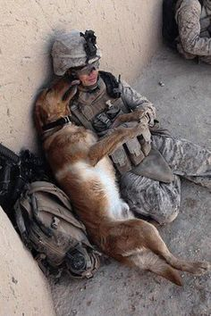 friend military dogs, anim, friends, soldiers, hero, veterans day, pet, service dogs, puppi