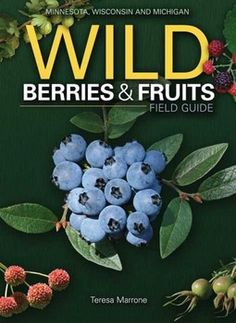 Wild Berries & Fruits Field Guide of Minnesota, Wisconsin, and Michigan by Teresa Marrone is by far the most indispensable foraging book I have ever owned, or even seen.