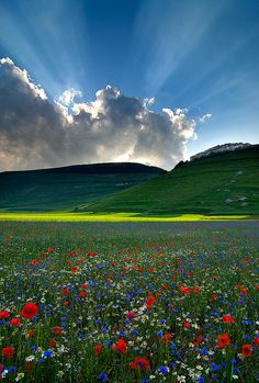 ✯ Castelluccio, Umbria, Italy  Beauty!!!