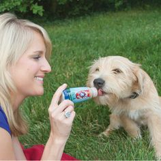 Keep Fido's breath minty fresh with a liquid treat! Lickety Stik LiquiMints