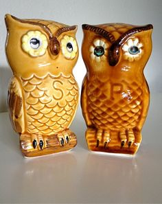 I really want to decorate my kitchen in owl stuff.