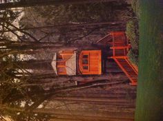 Treehouse. place to work, tree houses, treehous, backyard, kid