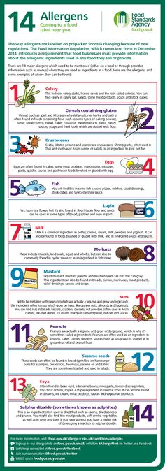 Infographic showing the 14 major food allergens. You can sign up to UK Food Standards Agency allergy alerts at food.gov.uk/email or follow #AllergyAlert on Twitter and Facebook.