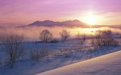japan, sunrises, dawn, winter trees, snow, wallpapers, amazing nature, place, winter scenes