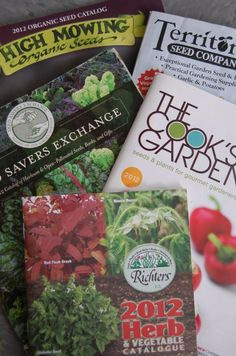 Seed And Plant Catalogs: Tips For Ordering Plants