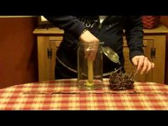 Primitive Country Decorating Ideas -Country Canning Jar Idea