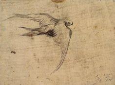 Swift | Vincent van Gogh | 1887