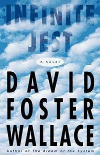 Infinite Jest by David Foster Wallace.  Hyper intelligent - a must read journey for your 20's.