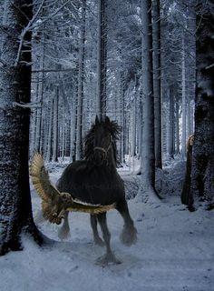hors, fairy tales, winter wonderland, owl, fairi, forest, winter scenes, hawk, animal