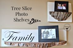 Homeroad-Junkers United with Family Tree Shelves and a Giveaway!