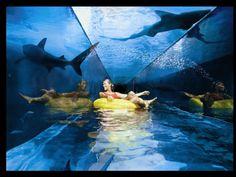 Best water slide - Dubai