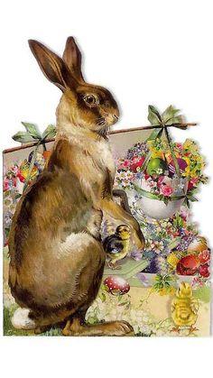 rabbit, vintage postcards, easter card, easterspr, bears, bunni, germany, easter bunny, printabl