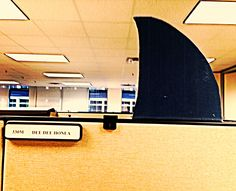 Shark Week Cubicle Decoration