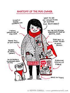 Anatomy of the Pug Owner © Gemma Correll 2012