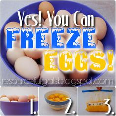 Freeze Eggs? Yes, You Can! | by The Resourceful Gals