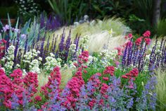 landscape design, landscape architecture, plant combinations, perennials