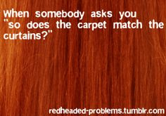 does the carpet...ginger problems