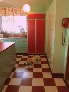Teal and red kitchen ideas on pinterest red kitchen for Teal and red kitchen
