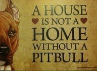A HOUSE is not a HOME without a PIT BULL
