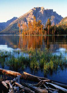 Jackson Lake , Grand Teton National Park, Wyoming: