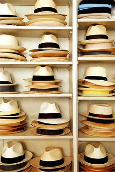 Panama hats.