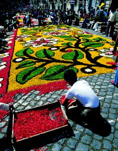 Infiorata di Genzano: A dazzling carpet of vibrant-colored flowers transformed in portraits, religious images and abstract designs stretches along the main street in Genzano, one of Rome's hill towns.