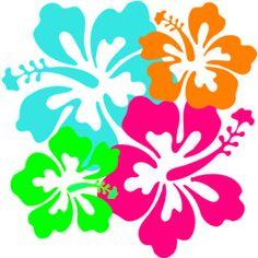 luau - hibiscus