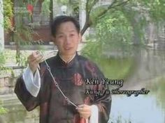 Kung Fu Weapons - Nine Section Whip