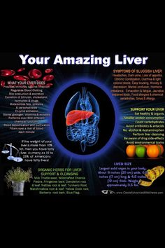 Liver Functions