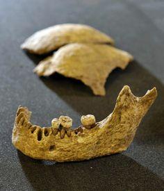 Skeleton found on Scottish archaeological dig may be that of Irish Viking king