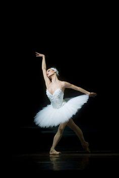El Lago de los Cisnes: Imagenes de Ballet / Swan Lake Images | Maria Doval Ballet