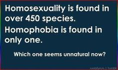 homosexuality is found in over 450 species.  homophobia is found in only one.