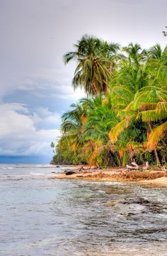 Manzanillo, Costa Rica: HDR photo of walking through paradise.
