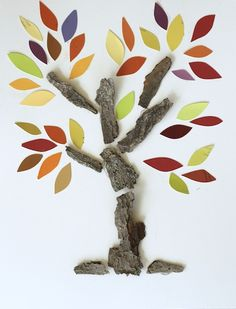 Bark and Paint Swatch Trees - Happy Hooligans